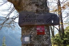 Zeller Staritzen