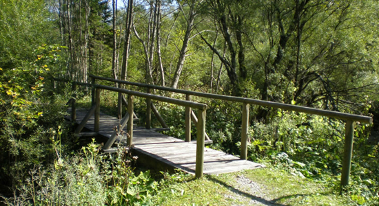 Rundweg Brücke