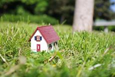 Grundstück oder Haus gesucht