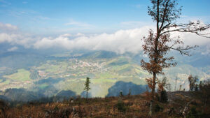 Sauwand - Foto: Alpenverein Mariazellerland